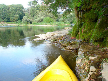 Canoeing on the Ardèche, near the shore